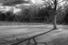 silver-snow-shadow-after-a-fresh-snowfall-in-comstock-park-michigan.jpg