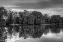 monochrome-morning-at-riverside-park-in-grand-rapids-michigan.jpg