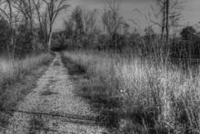 silver-trail-through-the-kent-trails-in-walker-michigan.jpg